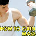 how to gain mass